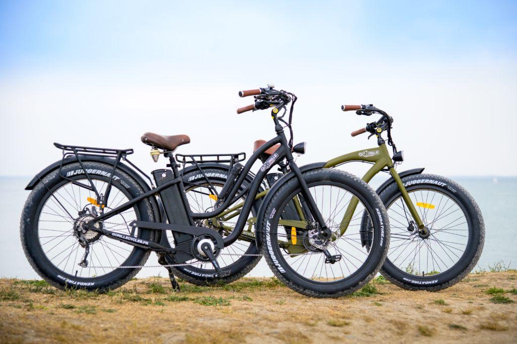 velosdemargaux-iledere-velofatbike